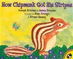 How Chipmunk Got His Stripes Book Cover